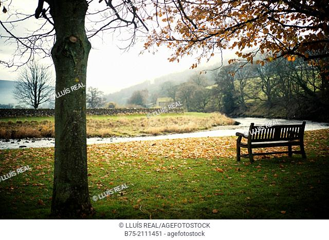 Landscape with river Warfe with a tree and a bench in Burnsal, Yorkshire Dales, England, UK, Europe