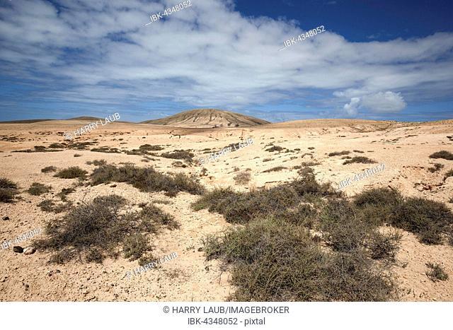 Desert-like, barren landscape with clouds at La Oliva, Fuerteventura, Canary Islands, Spain