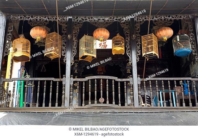 bird cages in a shop  Hoi An, Vietnam, Asia