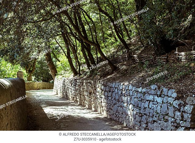 Umbria (Italy): small road in the woods leading to the Franciscan places