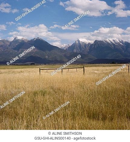 Grassy Landscape with Mountains in Background, Montana, USA