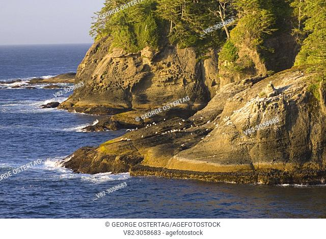 Cape Flattery shoreline, Makah Indian Reservation, Washington