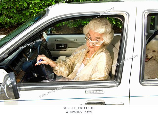 Senior woman and dog in car