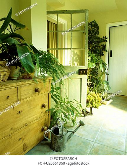Houseplants in traditional cream hall