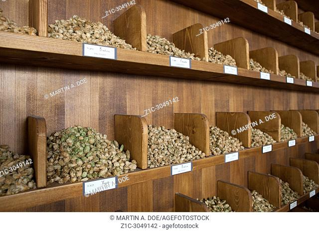 Different varieties of hops exposed in the brewhouse of Birrificio Angelo Poretti (Angelo Poretti Brewery) was built in 1908
