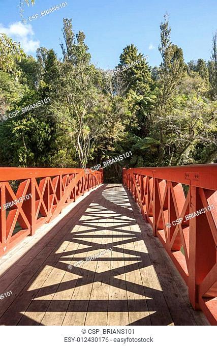 Bridge New Plymouth