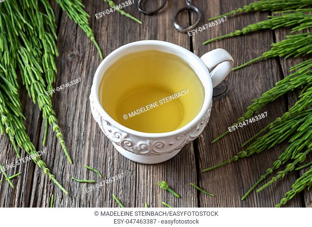 A cup of horsetail tea with fresh Equisetum arvense plant on a rustic background