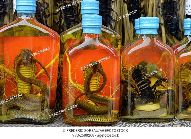 Snake liquor in Laos, South East Asia