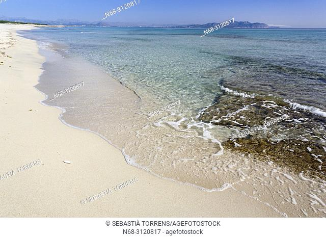 Son Real beach, Santa Margalida, Majorca, Balearic Islands, Spain