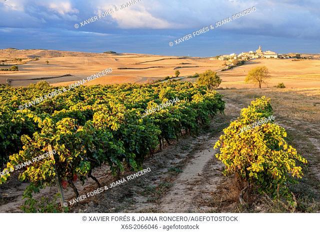 St. James way; Sunrise at Sansol village, Navarra, Spain
