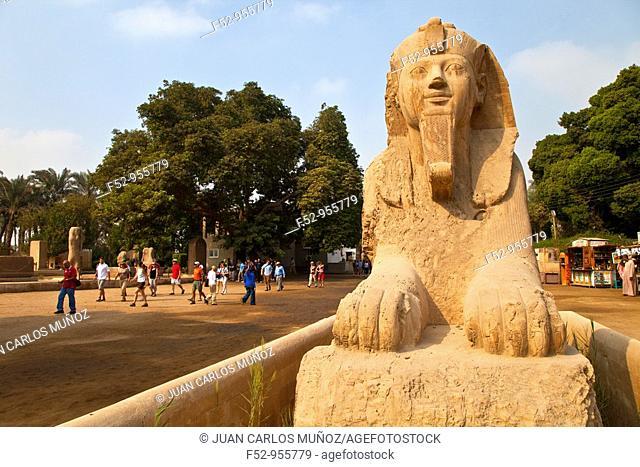 Calcite colossal Sphinx. Memphis. Cairo. Nile Valley. Egipt