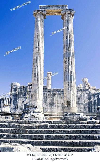 Columns of the Temple of Apollo, Didyma, Anatolia, Turkey