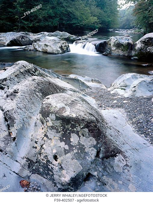 Little Pigeon River. Greenbier, Great Smoky Mountains National Park. Tennessee, USA
