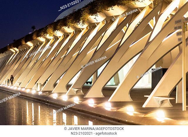 Detail of the City of Arts Reina Sofía, Valencia, Spain