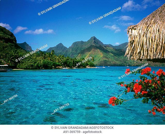 The lagoon. Bora Bora island. French Polynesia