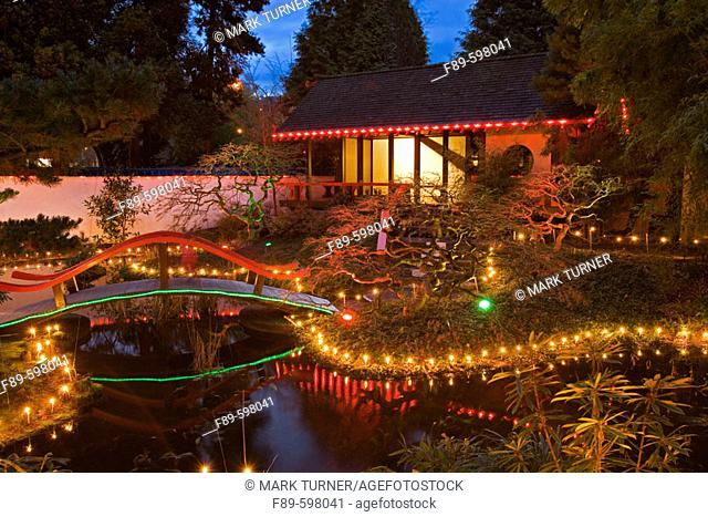Holiday in Japanese-style garden at dusk. Park & Tilford, N. Vancouver, BC