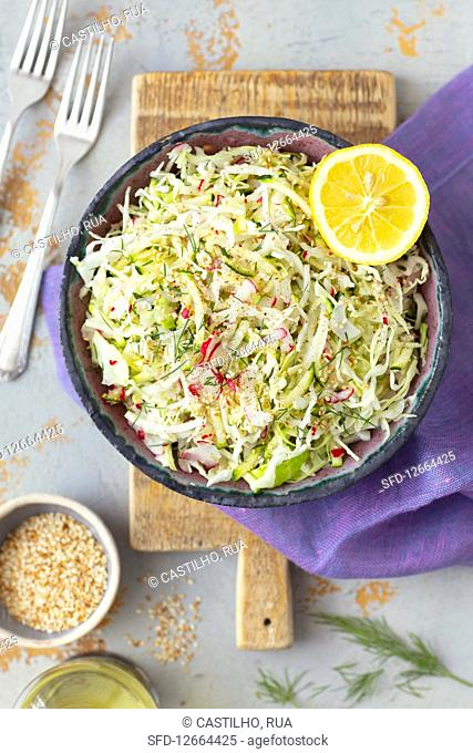 Cabbage, courgette and red radishes salad