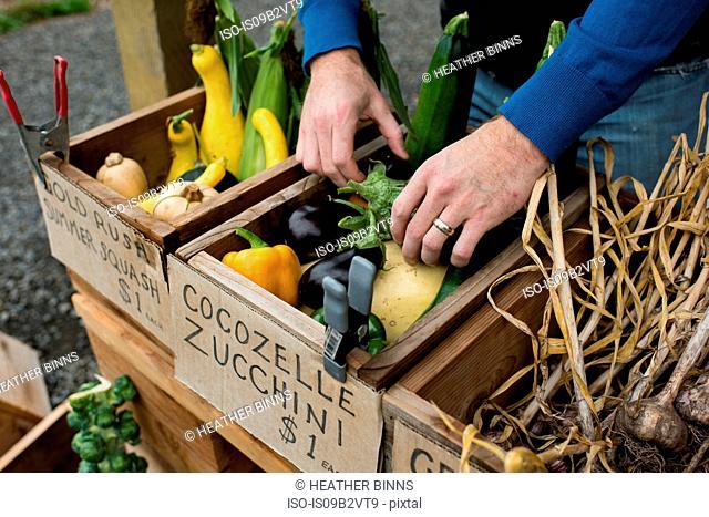 Man's hands preparing fruit and veg at organic farm shop
