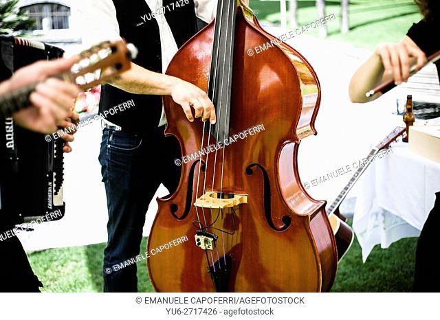 Music band plays bass, violin and guitar