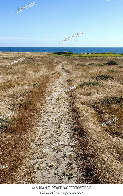 Path towards the ocean, near the town of Morro Bay, San Luis Obispo County, California, United States, North America