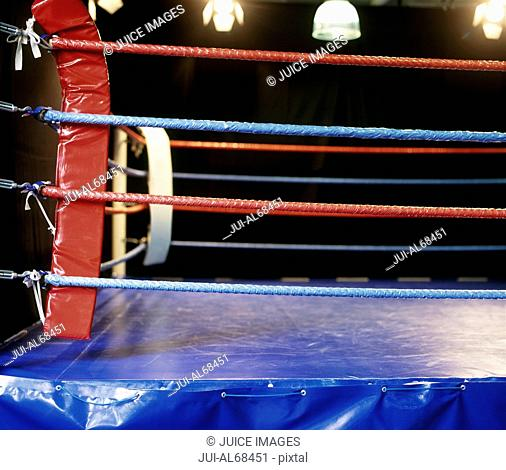 View of a boxing ring