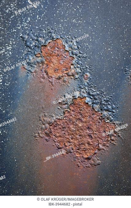 Rust, peeling paint, car body, Kyrkö Mosse junkyard, Ryd, Tingsryd, Kronoberg County, Sweden