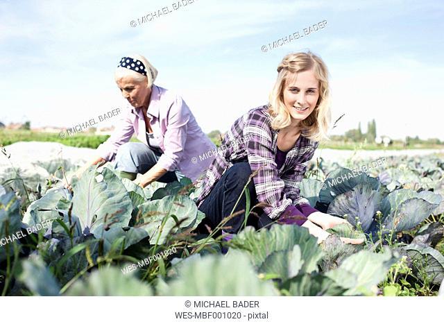 Germany, Saxony, Women working at the farm