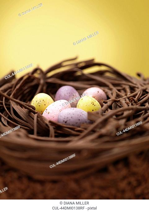 Close up of chocolate eggs in nest