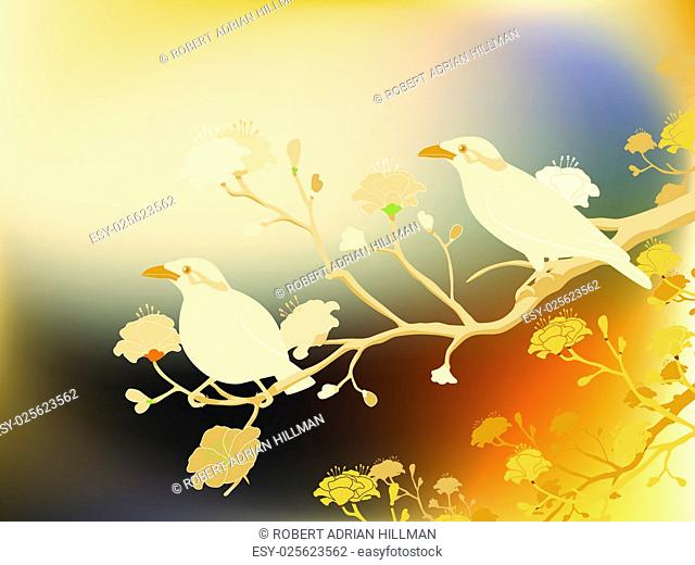 Editable vector illustration of a pair of endangered hill myna birds made with a gradient mesh