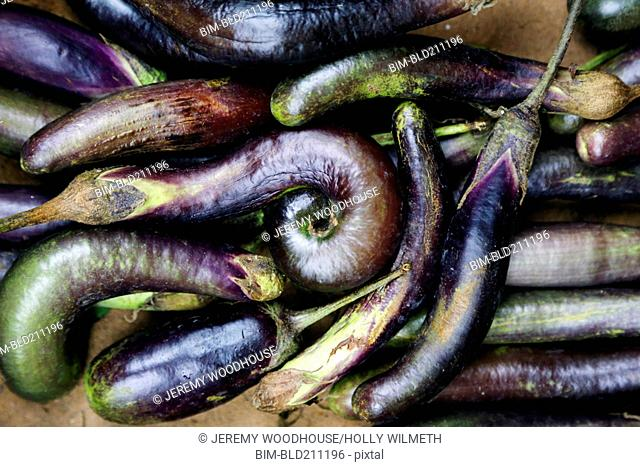 Close up of pile of eggplants