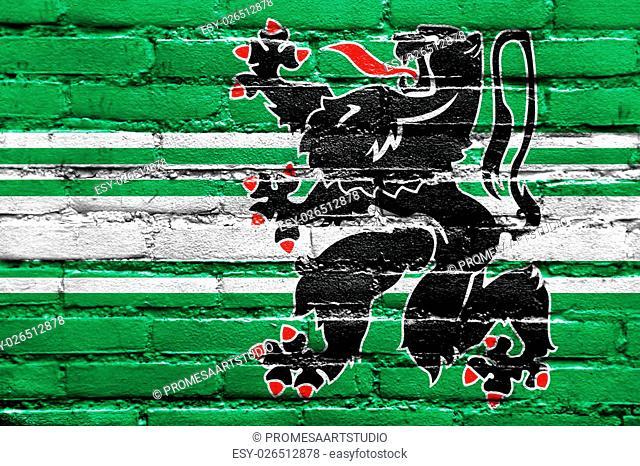 Flag of East Flanders Province, Belgium, painted on brick wall