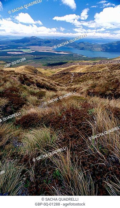 Tongariro Crossing (trail / volcanoes) Tongariro National Park, North Island, New Zealand