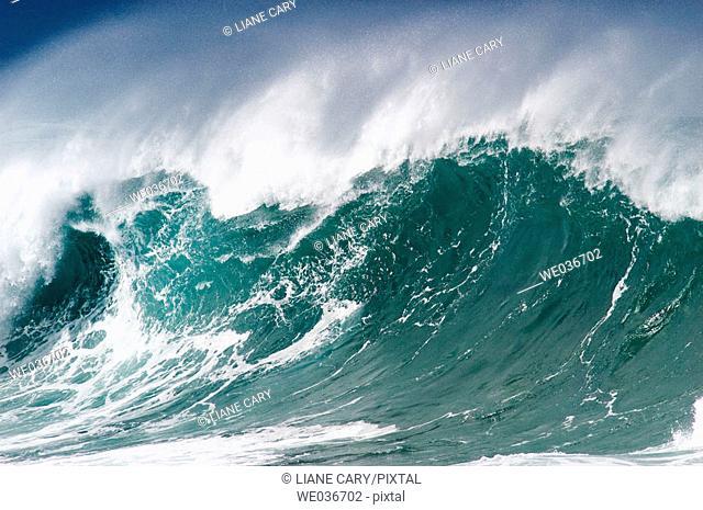 Wave. Oahu, Hawaii, USA