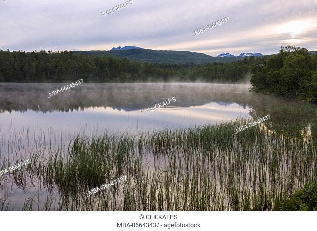 Pink clouds of midnight sun reflected in the clear water of a swamp Bogen Evenes Ofotfjorden Norway Europe