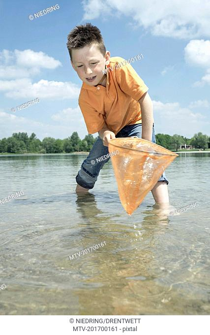 Boy catching fish with a brailer in the lake, Bavaria, Germany, Bavaria, Germany