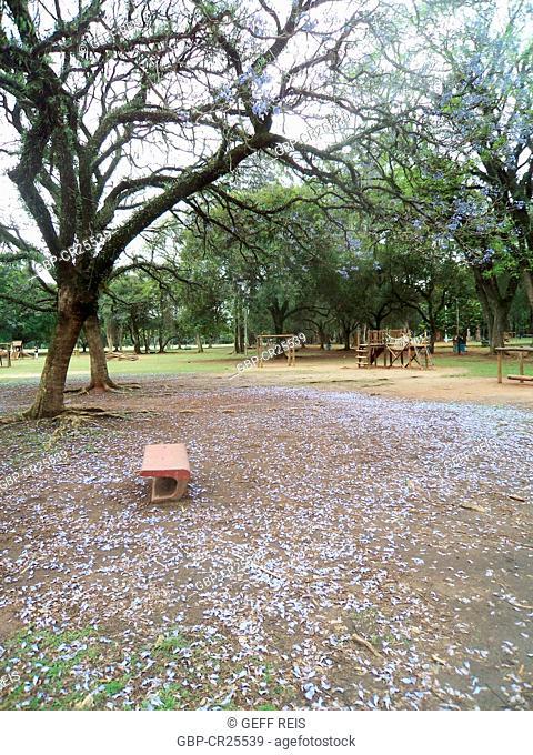 Bench, ibirapuera park, São Paulo, Brazil