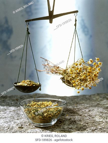 Beam scales with dried herbs and chamomile flowers
