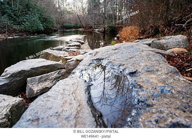 Davidson River - Sycamore Flats, Pisgah National Forest - near Brevard, North Carolina, USA