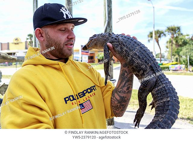Man holding an alligator he has rescued from a local pond, Orlando, Florida