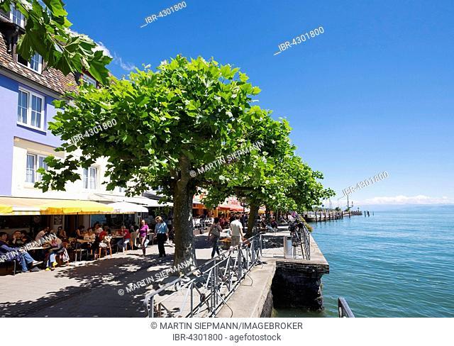 Promenade, Meersburg on Lake Constance, Bodenseekreis, Upper Swabia, Baden-Württemberg, Germany