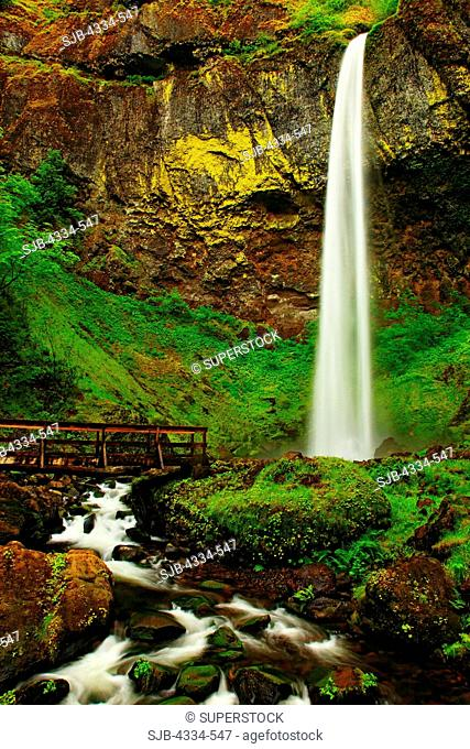Elowah Falls in the Columbia River Gorge National Scenic Area, Oregon