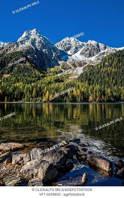 Anterselva/Antholz, South Tyrol, Italy. Autumn at the Lake of Anterselva/Antholzer See. In the background the Collalto/Hochgall