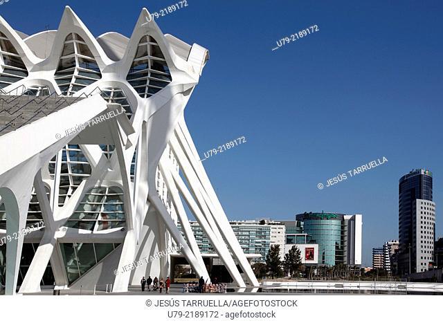 Ciudad de las Artes y la Ciencias Museo Principe Felipe Autor: Santiago Calatrava Valencia España Europa