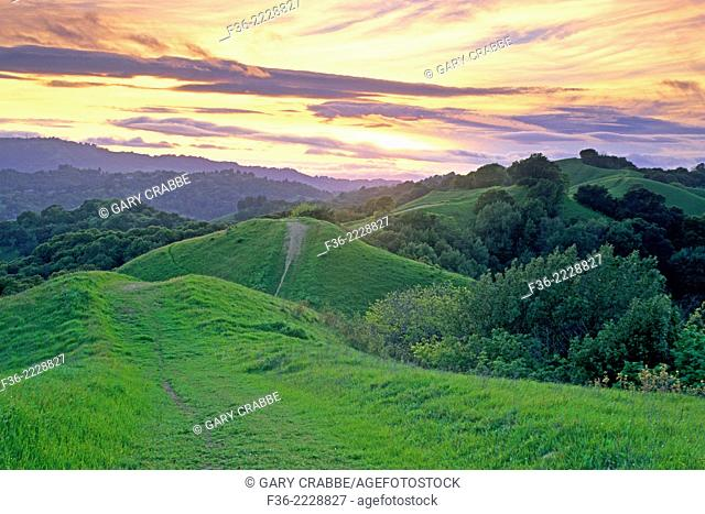 Sunset over green hills in spring along Lafayette Ridge, Lafayette, CALIFORNIA