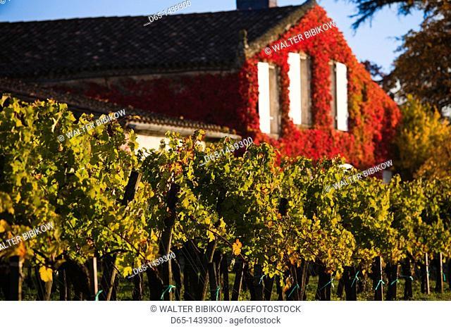 France, Aquitaine Region, Gironde Department, St-Emilion, wine town, UNESCO-listed vineyards