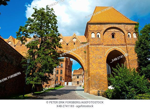 Zamek Krzyzacki, Teutonic castle, old town, Torun, Pomerania, Poland