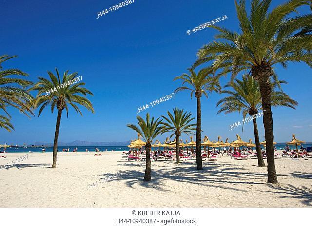 Balearic Islands, Majorca, Mallorca, Spain, Europe, outside, Alcudia, palm beach, palm beaches, sand beach, sand beaches, beach, seashore, beaches, seashores