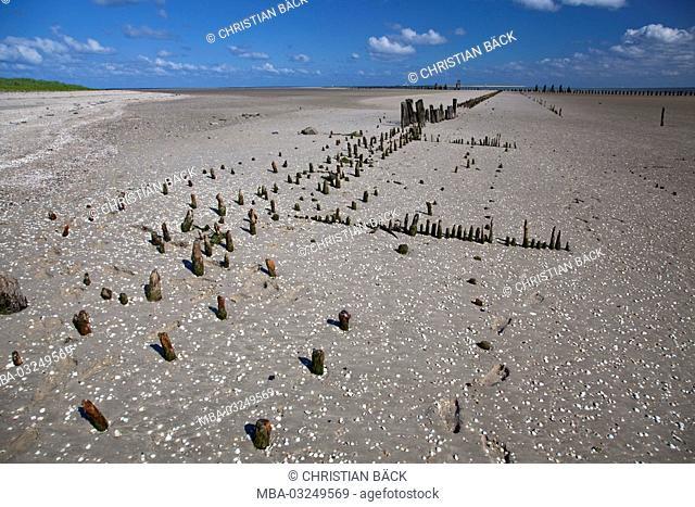 Breakwaters at the beach, East landing pier, island Wangerooge, the East Frisians, Lower Saxony, Germany, Europe