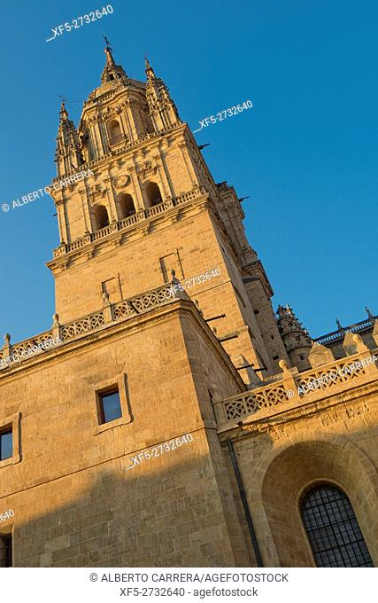 Bell Tower, New Cathedral of Salamanca, Cathedral of the Asunción de María, Gothic Renaissance Baroque Style,16th-18th century