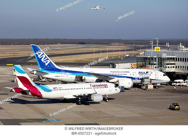 Aircraft ANA All Nippon Airways Boeing 787-8 Dreamliner, and Euro Wings, Airbus A 320-214 on the tarmac, Düsseldorf Airport, Düsseldorf, North Rhine-Westphalia